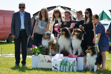 Lithuanian British Sheepdog Owners Club Specialty Show 2017